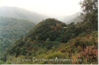 Castro de Larón. Vista general