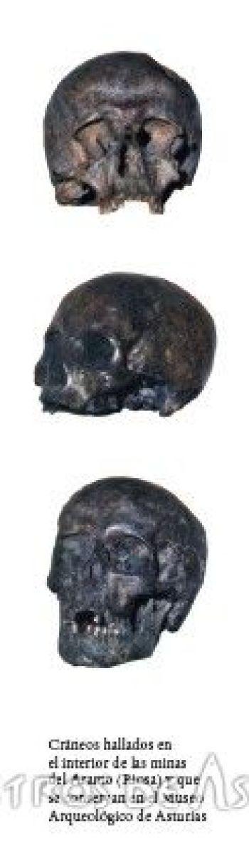 Cráneos de la mina de El Aramo