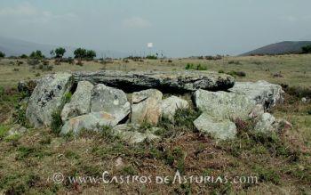 Dolmen de A Pedra da Filadoira o de Entrerríos, Illano (Foto: Á. Villa)