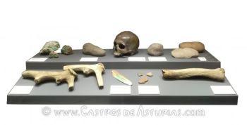 Cráneo, herramientas y cerámica campaniforme de las minas prehistóricas de El Aramo
